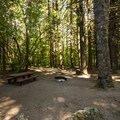Typical campsite at Horseshoe Cove Campground.- Baker Lake, Horseshoe Cove Campground