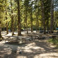 Typical campsites at Kulshan Campground's western section.- Baker Lake, Kulshan Campground