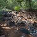 The trail to Fossil Creek is a bit rugged in spots, but it is easy hiking.- Fossil Creek