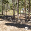A typical campsite in Christmas Meadows Campground.- Christmas Meadows Campground