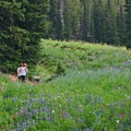Hiking duo taking in the sights.- Catherines Pass Hike