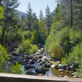Carson River.- Hope Valley Resort + Campground
