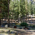 Typical site at Crystal Springs Campground.- Crystal Springs Campground