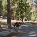 Crystal Springs Campground.- Crystal Springs Campground