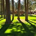 Village Green Park.- McKenzie Pass Scenic Byway