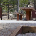 Typical site at Mount Rose Campground.- Mount Rose Campground