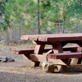 Picnic table at Goose Meadows Campground.- Goose Meadows Campground