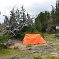 Backcountry camp site (High Camp).- Mount Adams: High Camp via Killen Creek