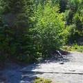 Campsite at Shovel Lake.- Mount Margaret Backcountry Lakes