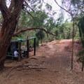 A small clearing and the shelter.- Kuli'ou'ou Ridge