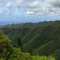 Views start to emerge as the vegetation thins.- Kuli'ou'ou Ridge