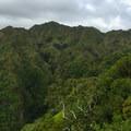 The higher, steeper ridge ascends to the northwest.- Kuli'ou'ou Ridge