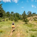 The equestrian trail is a bit overgrown in places but is lightly-traveled.- Lariat Trail + Stone Temple Circuit