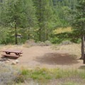 Walk-in tent site at Silver Creek Campground.- Silver Creek Campground