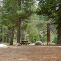Typical site at Silver Creek Campground.- Silver Creek Campground
