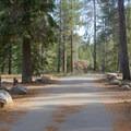 Main loop at Silver Creek Campground.- Silver Creek Campground