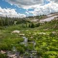 Lots of water this year.- Twin Lakes Hike via Sheep Lake Trail