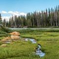 Several streams cross the trail.- Twin Lakes Hike via Sheep Lake Trail