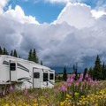 Camping in a garden of wildflowers.- Dumont Lake Campground