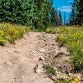 While it is possible to drive much of the trail, it's probably not a good idea.- Rabbit Ears Peak