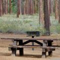 Typical site at Nevada Beach Campground.- Nevada Beach Campground