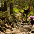 There seems to be no end to the stairs.- The Grouse Grind + Goat Ridge