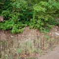 Bottom of the trail.- Bennie Creek