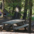 Picnic tables.- Silver Lake West Campground