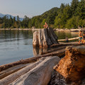 Driftwood lining the shore creates a great playground.- Porteau Cove Provincial Campground