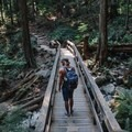 One of the many bridges that are built into the trail. - Quarry Rock