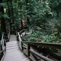 A manageble staircase. - Quarry Rock