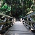 Another great bridge. - Quarry Rock