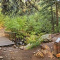 The first feature you come across is a short bridge and a small memorial to a man who frequented the trail.- Lake Blanche Trail