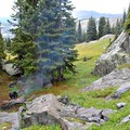 A backcountry campsite along the trail.- Fancy Pass, Missouri Lakes Loop