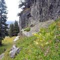 Spur trails.- Fancy Pass, Missouri Lakes Loop