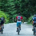 The climb on the fire road is not that bad.-  Mount Fromme Trails: Lower Fromme Bike Loop