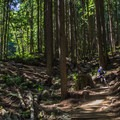 Bombing down Bobsled.-  Mount Fromme Trails: Lower Fromme Bike Loop