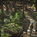 Riding down Upper Bobsled.-  Mount Fromme Trails: Lower Fromme Bike Loop