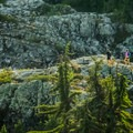 Leaving the ridge to connect to Alpine Trail.- The Grouse Grind + Goat Ridge