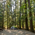 A typical forested campsite.- Nairn Falls Campground