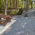 Day use area.- Nairn Falls Campground