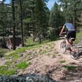 Little Scraggy's single track is fast and flowy.- Little Scraggy Mountain Bike Ride