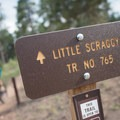 """This sign should read """"Get ready to smile!""""- Little Scraggy Mountain Bike Ride"""