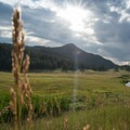 The valley at Buffalo Creek Recreation Area.- Little Scraggy Mountain Bike Ride