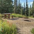 Picnic tables at each site.- Albion Basin Campground
