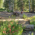 Another great spot to bring the whole family.- Albion Basin Campground
