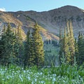 Sugarloaf Mountain (11,050') sits above the Alta ski resort.- Albion Basin Campground