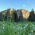 Many beautiful hikes in all directions.- Albion Basin Campground