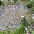 Mountain goat.- Mount Margaret Backcountry Lakes