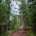 North Ridge Trail ascending toward Half Moon Pass.- Mount of the Holy Cross, North Ridge Route